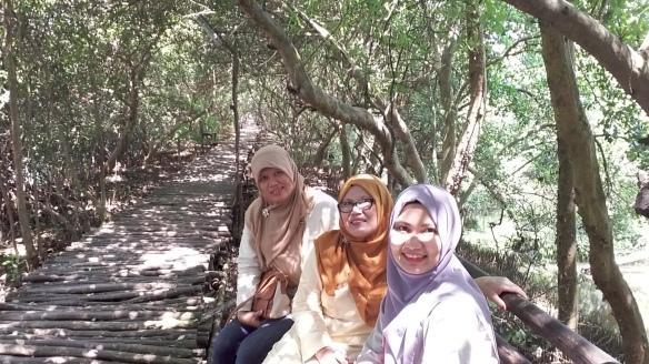 Image Result For Wisata Hutan Mangrove